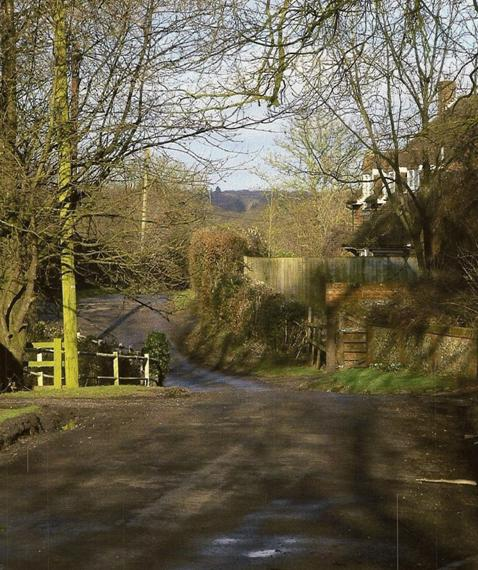Winter Sunshine in Kiln Lane